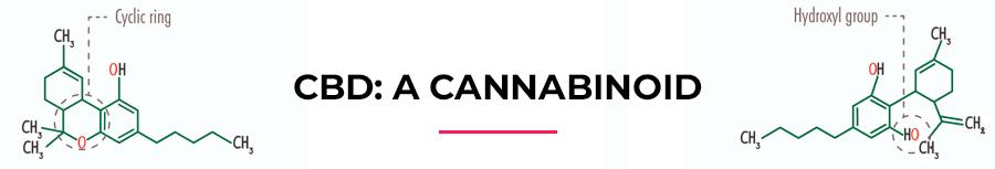 CBD: a cannabinoid