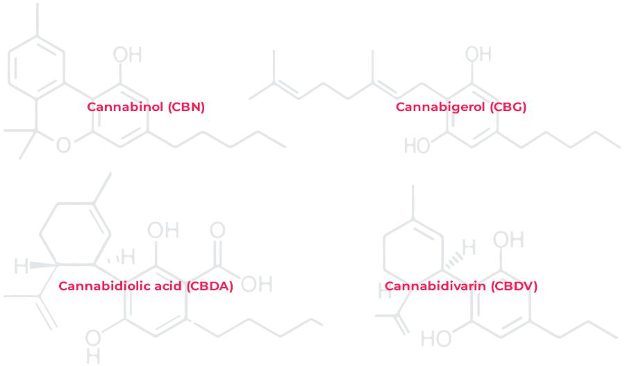 Cannabinol (CBN), Cannabigerol (CBG), Cannabidiolic acid (CBDA), Cannabidivarin (CBDV)