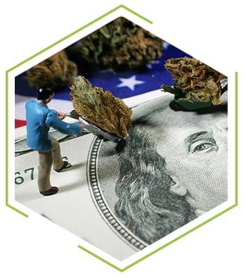 money-farming_1